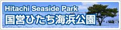 ひたち海浜公園へ行こう