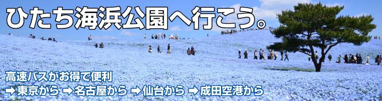 勝田 駅 から ひたち 海浜 公園